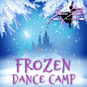 Frozen Camp 2020